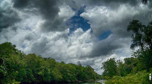 De la pluie à l'océan, parcours d'un fleuve