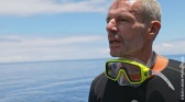 Au-delà des récifs coralliens polynésiens, la vie