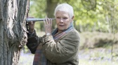 Judi Dench : une passion pour les arbres