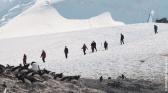 La vie cachée en Antarctique