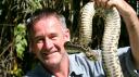 Les 10 serpents les plus dangereux