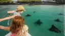 Les Galapagos en famille