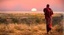 Masai Mara : la migration de tous les dangers