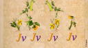 Les semences, une histoire de l'agriculture