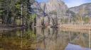 Yosemite, terre vivante