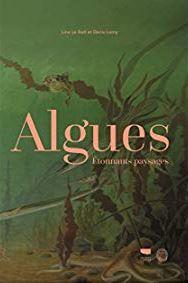 Algues, étonnants paysages