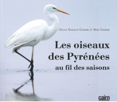 Les oiseaux des Pyrénées au fil des saisons