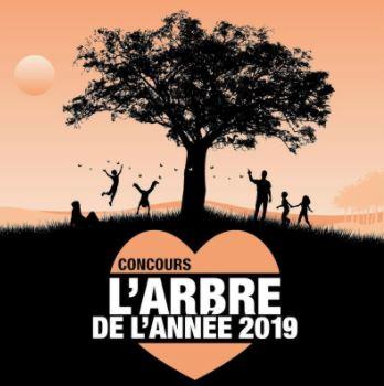 Concours Arbre de l'Année 2019