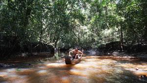 Amazonie, dans les pas de Maufrais (c) Eliott Schonfeld