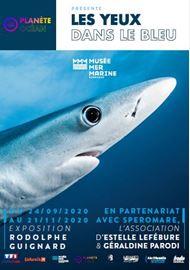 Les yeux dans le bleu - exposition Musée mer marine de Bordeaux