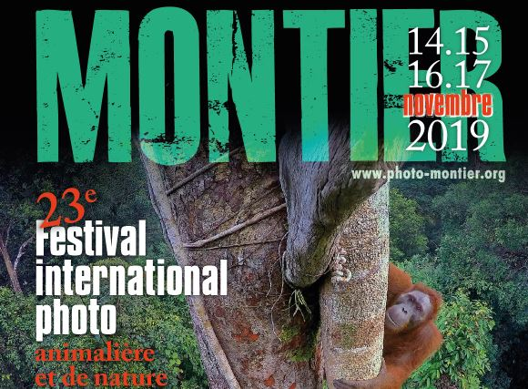 Festival Photo Montier 2019