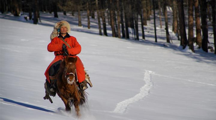 Le cavalier mongol - Hamid Sardar