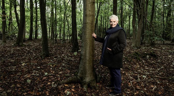 Judi Dench - Une passion pour les arbres