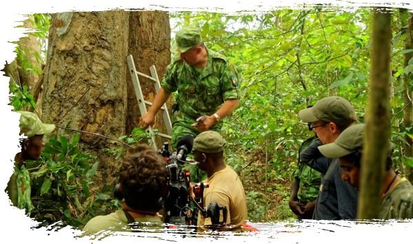 Eden vert, la guerre du bois