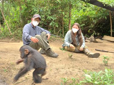 Primates en sursis, le combat d'Amandine
