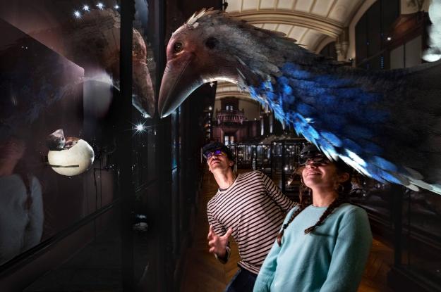 Revivre, les animaux disparus en réalité virtuelle. Aepyornis ou oiseau éléphant. (c) Saola studiomnhn