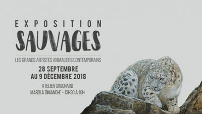 Exposition Sauvages