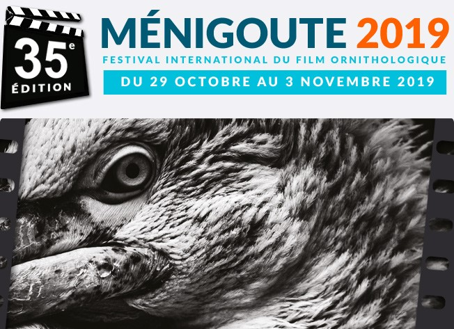 FIFO de Ménigoute 2019